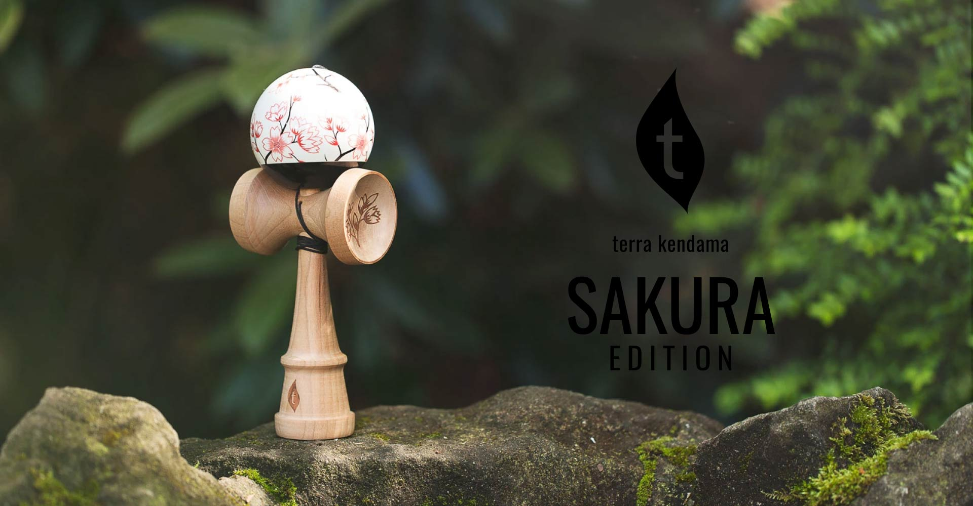 home_terra_kendama_new